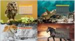 دانلود تقویم سال ۹۲ – تقویم ۱۳۹۲ با پس زمینه حیوانات