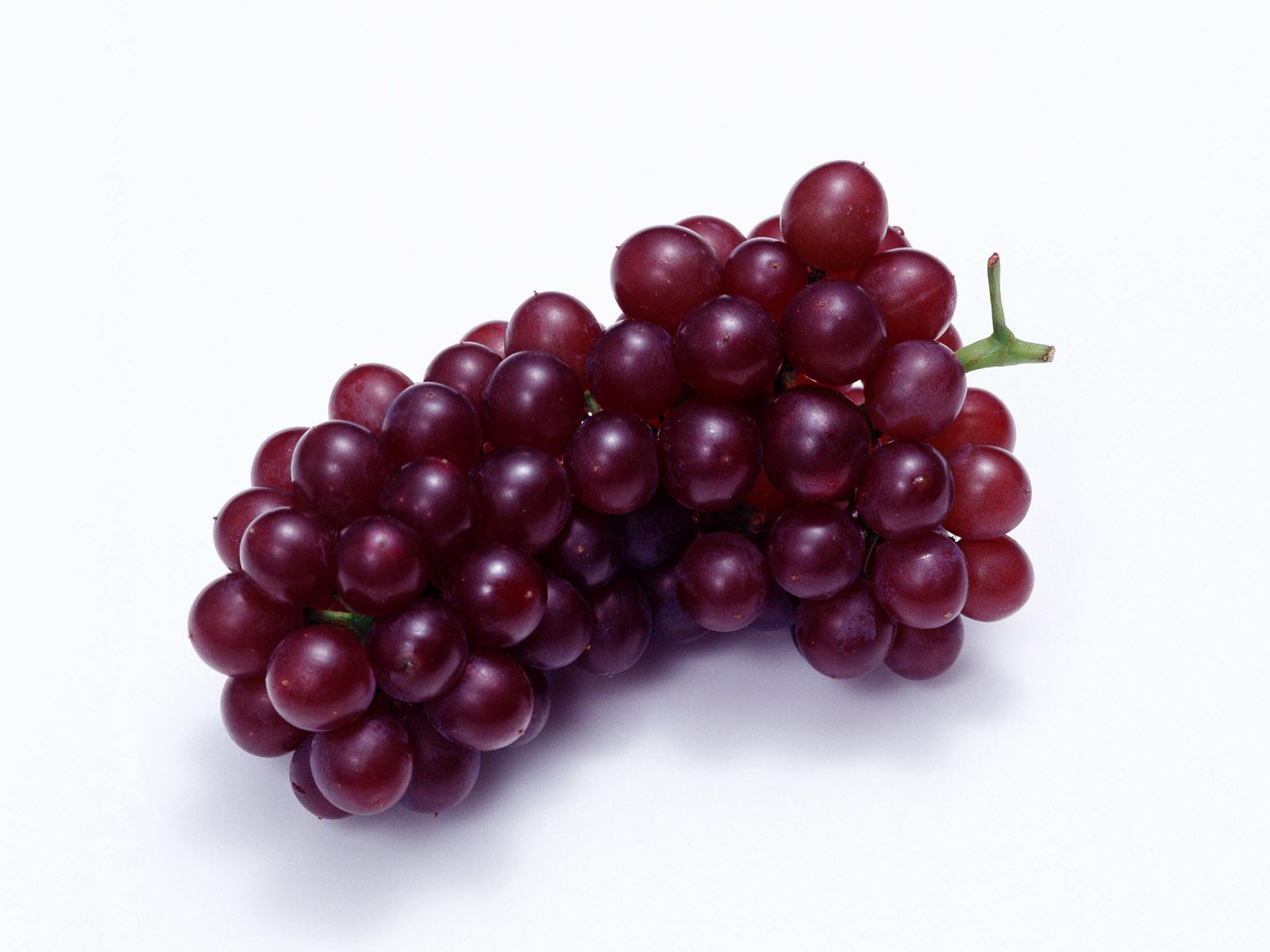 با خواص و فواید انگور برای مو آشنا شوید..!